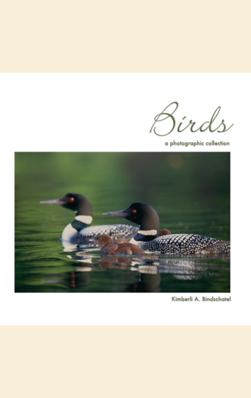 Birds: A Photographic Collection