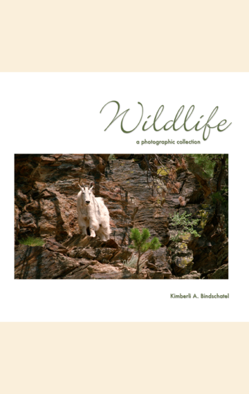 Wildlife: A Photographic Collection
