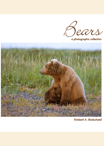 Bears: A Photographic Collection