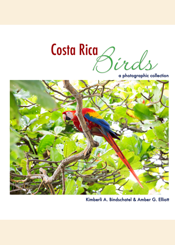 Costa Rica Birds: A Photographic Collection