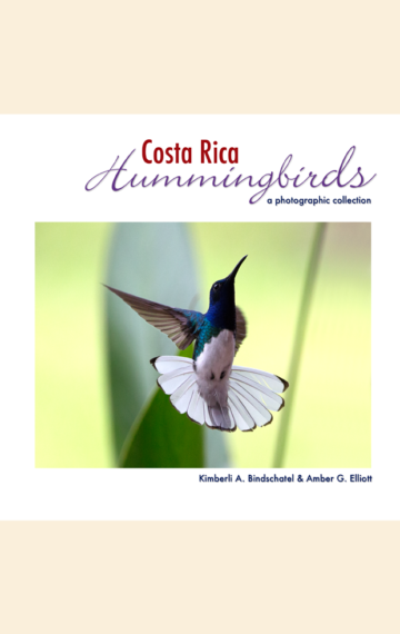 Costa Rica Hummingbirds: A Photographic Collection